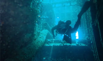 Redland Sport Divers Diver exploring HMAS Brisbane Wreck swimming between decks